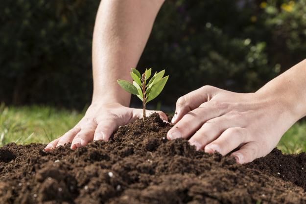 Podział majątku uwłaszczonej nieruchomości rolnej