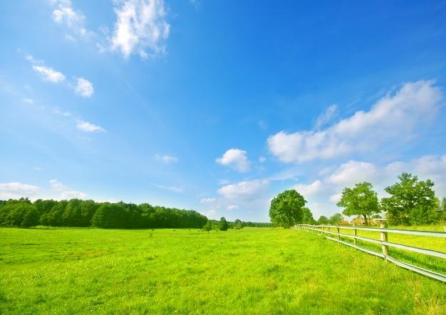 Przekazanie gospodarstwa rolnego, nieruchomości do majątku wspólnego lub osobistego małżonków